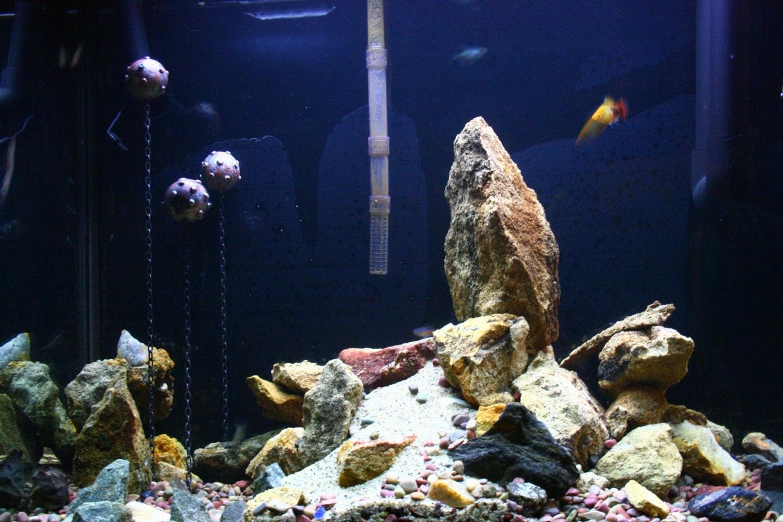 Fish tank decoration floating aquarium mine for Aquarium decoration uk