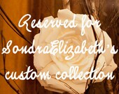 Reserved for SondraElizabeth's custom collection