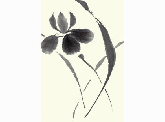 Japanese Iris Black and White Original Ink Painting