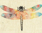 Nature Dragonfly Colour Insect Digital Image Download Transfer To Pillows Tea Towels No.23