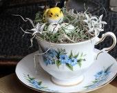 Little Yellow Bird and Nest on Bone China Tea Cup