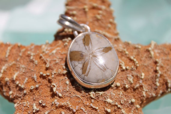 Treasury Item - Vintage Sterling Silver Fossilized Sand Dollar Pendant