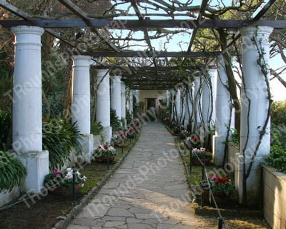 European Garden no.1029