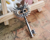 simple necklace,retro silver owl with key pendant,owl necklace---N016