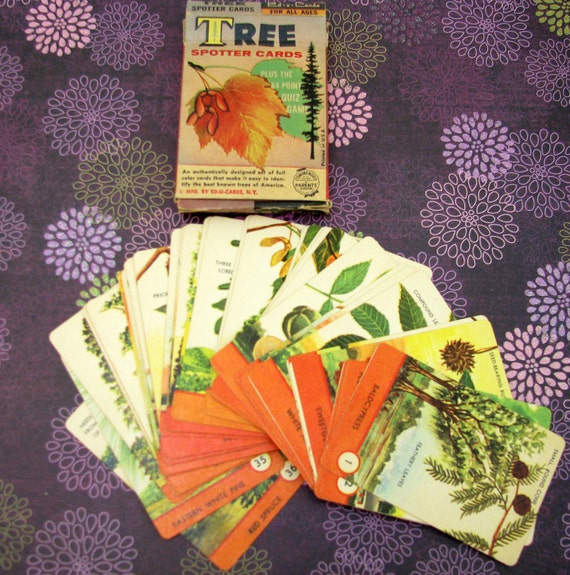 Vintage 1950s Ed-U-Cards Tree Spotter Card Game
