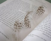 Pheasant Feather Bookmark