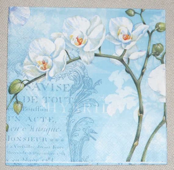 """Paper Napkin for crafts, decoupage, floral napkin, white orchid,  Blue Background,  1 Lunch size 13""""x13""""  WHITE ORCHIDS Paper Napkin"""