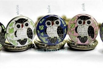 5pcs 27mmx27mm assorted color owl pocket wacth charm pendant SZ101