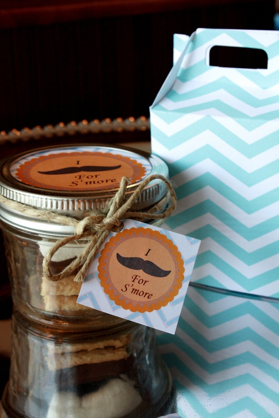6 Complete Mini S'more Kits and Mason Jar Party Favor- Mustache Party Favor