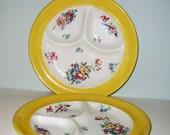 Vintage Shabby Chic Roses Syracuse China Grill Plates