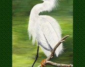 Herons and Egret Note Cards