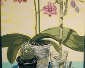 Composition of orchid