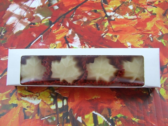 Maple Candy - 4 Little Leaves of Sweetness (Boxed)