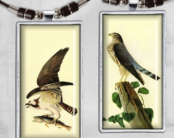 Domino 1x2 inch - Digital Collage - Printable Sheet - Instant Download for jewelry pendants, paper crafts - VINTAGE BIRDS