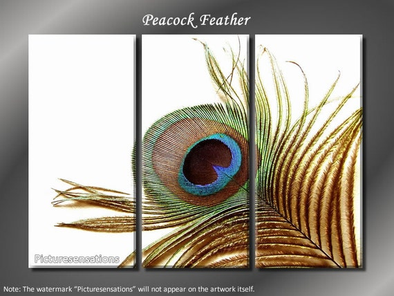 Framed Huge 3 Panel Art Bird Feather Eye of Peacock Giclee Canvas Print - Ready to Hang