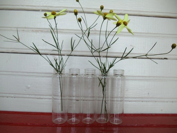 "Five Vintage Test Tubes/Bud Vases ""Instant Collection"""