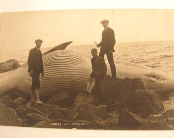 Bizarre Vintage Antique Victorian RPPC Real Photo Postcard of Young Men and a Whale at Lendalfoot