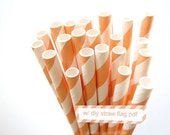 Striped Orange PEACH Paper Straws orange peach and White Stripe - set of 25 w/ DIY Straw Flags PDF