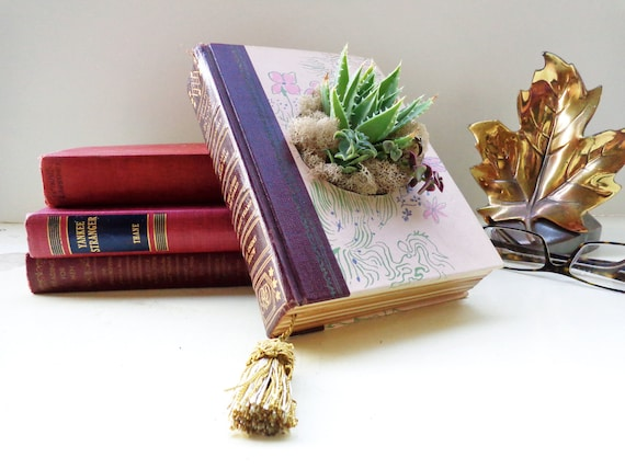 Eco Succulent Book Planter Pink Wine Succulent Centerpiece Book Lover Succulent Lover // Hooray Me