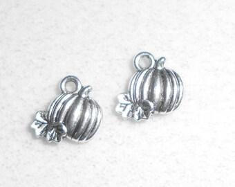 Silver  Pumpkin Charms