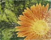 "Signed Original Archival Quality Fine Art Print. Dew Covered Daisy Polaroid Image Transfer On Handmade Paper. Also Available 5""x7"" - 20""x30"""