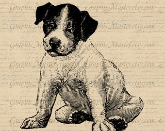 Puppy t shirt printing Clip Art Animal Vintage Digital Download Image Iron On Transfer to Fabric Clothing Tote Bags Pillows Tea Towels An88