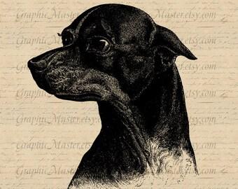 Black Doberman Dog clip art Digital Collage Sheet Image Download Iron On Transfer to Fabric T Shirts Pillows Totes Burlap Tea Towels An93