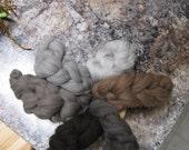Montana colored Merino sampler