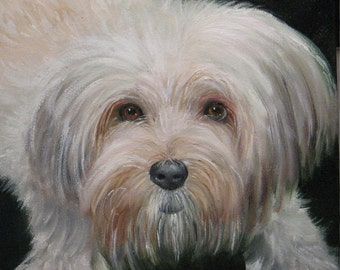 Custom Oil Pet Portraits 10 and 12 inch square canvas