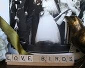 Love Birds  - Unique Anniversary or Wedding Keepsake Decor