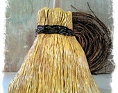 Sweeping Disguise:  Broom Plunger Cover