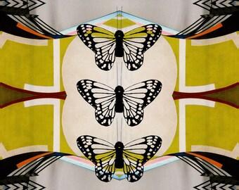 3 Butterflies - 5x7 Art Card