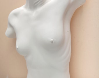 Female torso, life-size cast plaster  figurative athletic