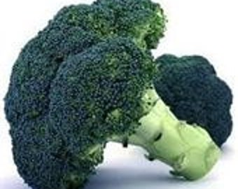 Heirloom, Waltham 29 Broccoli, Seeds, Highly Nutritional