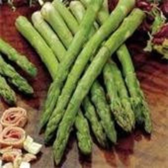 Heirloom, Asparagus, Mary Washington, Packed with Nutrients, 20 Seeds