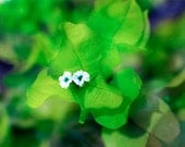 "Sunlight and Flower Photograph- Bright Green, Spring Colors - ""Cabo 52 Quince"" - DiegoKahloFineArt"