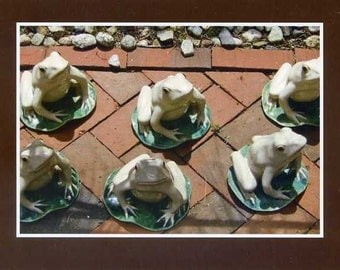 Ceramic frogs- photo card