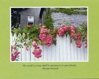 Persian Proverb- photo card