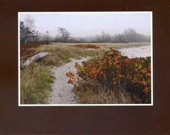 South Beach in autumn - photo card