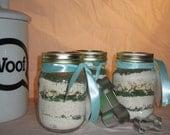 MAKE YOUR OWN: Mint Dog Treat Jar - 1 pint mason jar