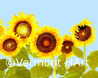 Watercolor, Flowers, Sunflowers, Sunflowers in Watercolor