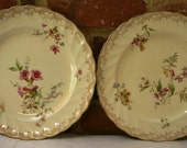 Two lovely antique Bishop & Stonier Floral plates Oriental Ivory design 1878-1936.