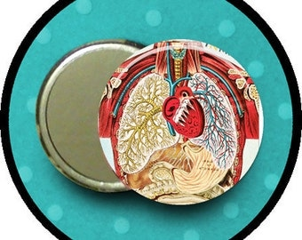 Look Inside the HUMAN ANATOMY 2.25 inch pocket MIRROR, button or magnet 2 1/4 size