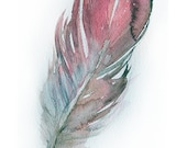 Watercolor Feather painting-Art original-Feather painting