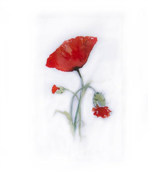 Watercolor painting of Peonies -Art original-Poppies painted by watercolors