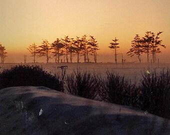 Snow Fog, Denmark,  8 x 10 Fine Art Print