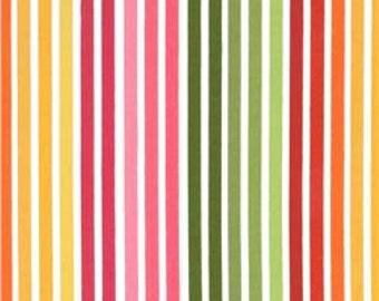 1/4m Remix Stripe Garden - Ann Kelle