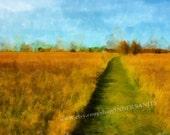 Field of Dreams - 8x10 Fine Art Print