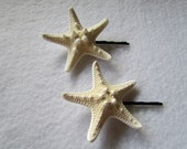 Knobbed Starfish Hair Pins set of 2