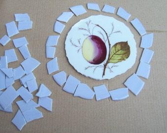 Broken China Focal, Mosaic china, Mosaic supplies, hand cut china tiles, Fruit